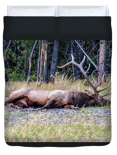 Duvet Cover featuring the photograph Sleepy Elk 2009 03 by Jim Dollar