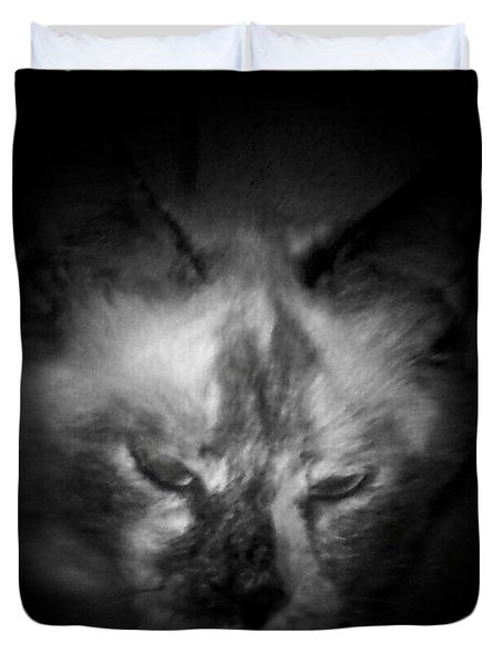 Duvet Cover featuring the photograph Sleepy Head by Betty Northcutt