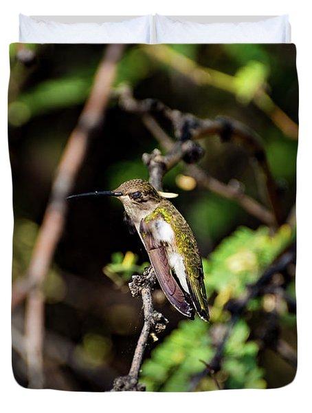 Sleepy Hummingbird Duvet Cover