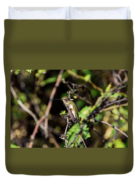 Sleepy Hummingbird Duvet Cover