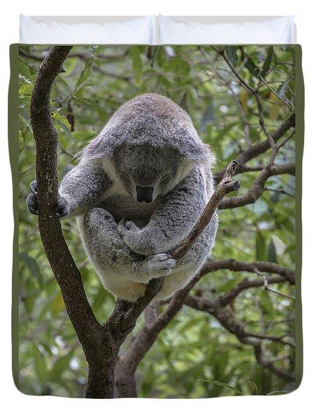 Sleepy Koala Duvet Cover by Sheila Smart Fine Art Photography