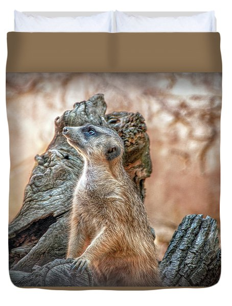 Duvet Cover featuring the photograph Slender-tailed Meerkat by Hanny Heim