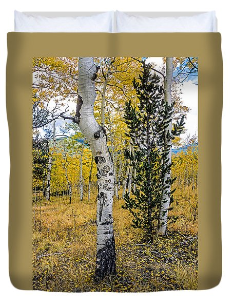 Slightly Crooked Aspen Tree In Fall Colors, Colorado Duvet Cover