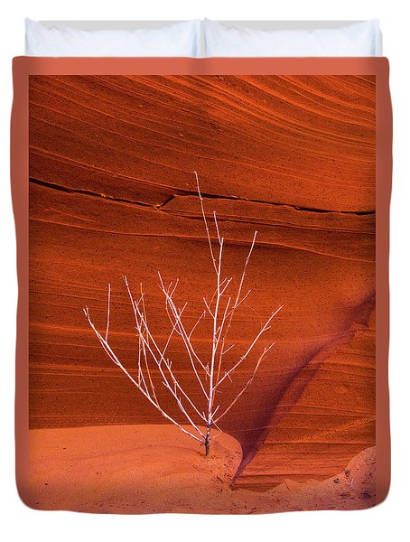 Slot Canyon Sentinel Duvet Cover