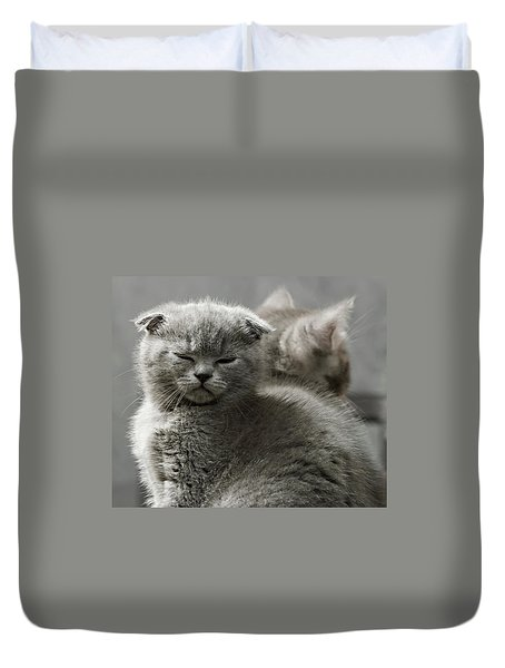 Duvet Cover featuring the photograph Slumbering Cat by Evgeniy Lankin