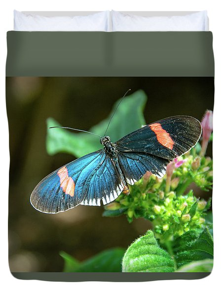 Small Black Postman Butterfly Duvet Cover