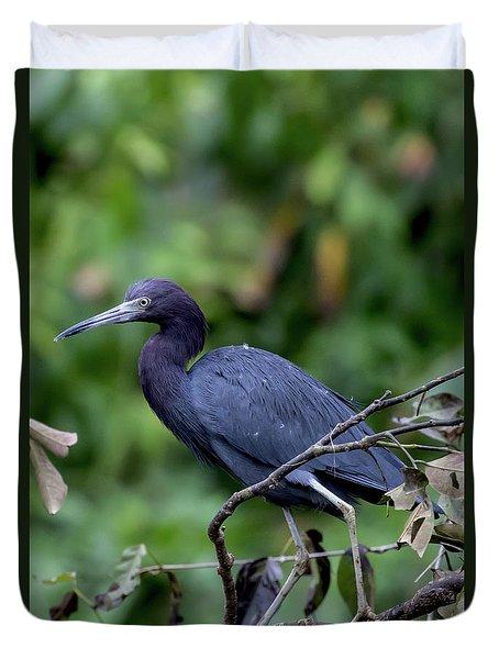 Duvet Cover featuring the photograph Small Blue Heron by John Haldane
