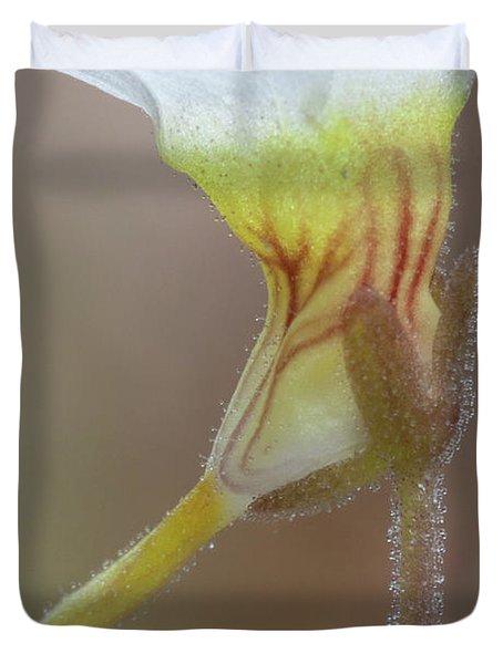 Small Butterwort Duvet Cover