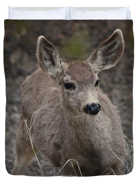 Small Fawn In Tombstone Duvet Cover by Colleen Cornelius