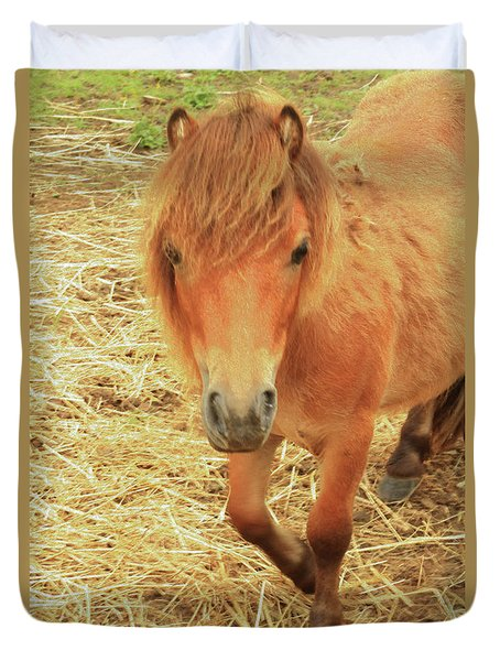 Small Horse Large Beauty Duvet Cover by Karol Livote