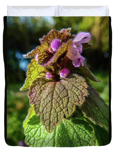 Small Mauve Flowers 7 Duvet Cover by Jean Bernard Roussilhe