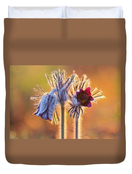 Duvet Cover featuring the photograph Small Pasque Flower, Pulsatilla Pratensis Nigricans by Davor Zerjav