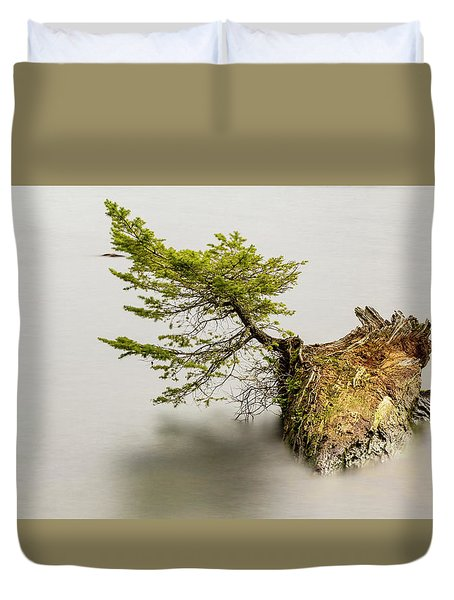 Small Tree On A Stump Duvet Cover