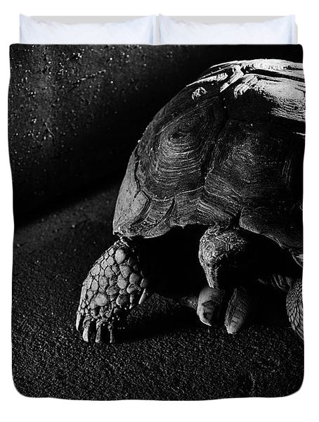 Small Turtle Exploring The Surroundings Duvet Cover