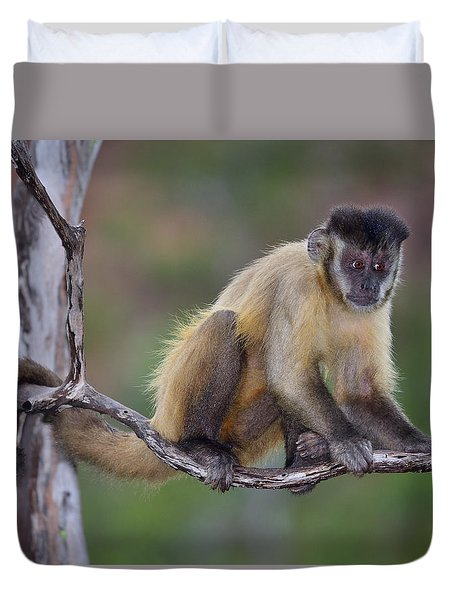 Duvet Cover featuring the photograph Smarty Pants by Tony Beck