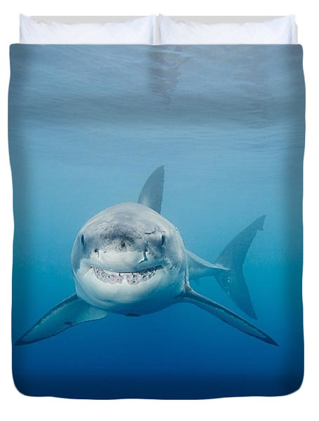 Smiling Great White Shark Duvet Cover by Dave Fleetham - Printscapes