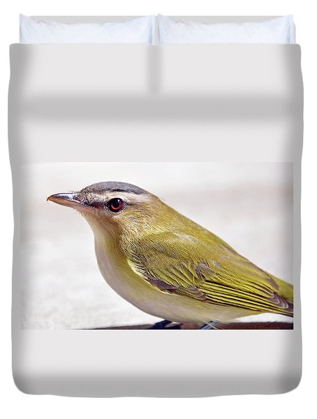 Duvet Cover featuring the photograph Smooth by Glenn Gordon