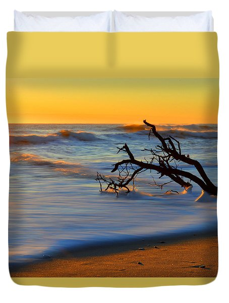 Smooth Move Duvet Cover by Dianne Cowen