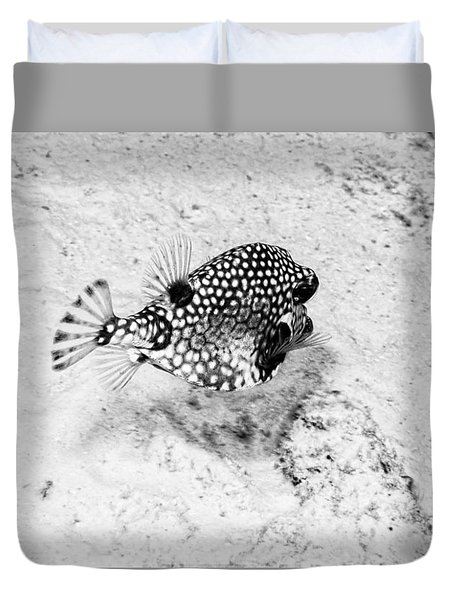 Smooth Trunkfish Duvet Cover by Perla Copernik