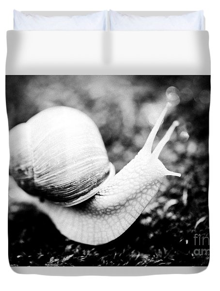 Snail Crawling On The Stone Artmif Duvet Cover