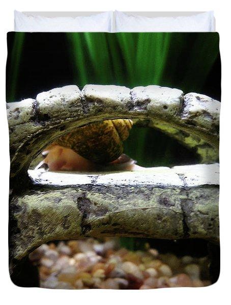 Snail Over A Bridge Duvet Cover