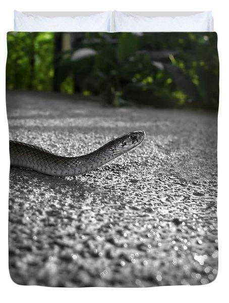 Snake In The Sun Duvet Cover