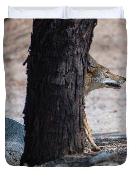 Sneaky Coyote  Duvet Cover