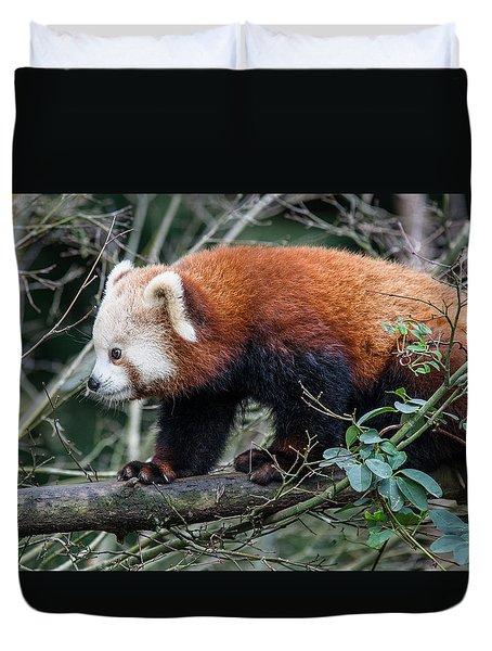 Sneaky Red Panda Duvet Cover