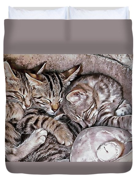Snoring Purrs Of Kitten Brothers Duvet Cover