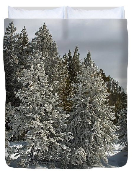 Snow And Ice Covered Evergreens At Sunset Lake  Duvet Cover