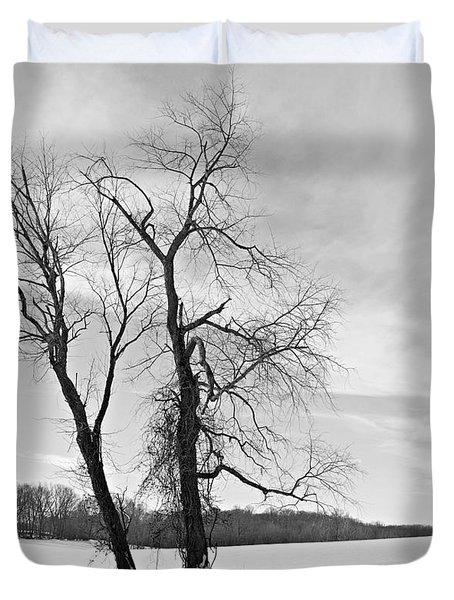 Snow And Trees Duvet Cover by Richard Reeve