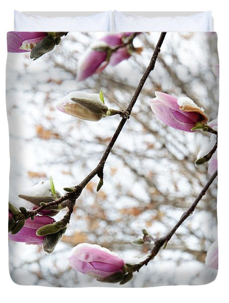 Snow Capped Magnolia Tree Blossoms 2 Duvet Cover by Andee Design