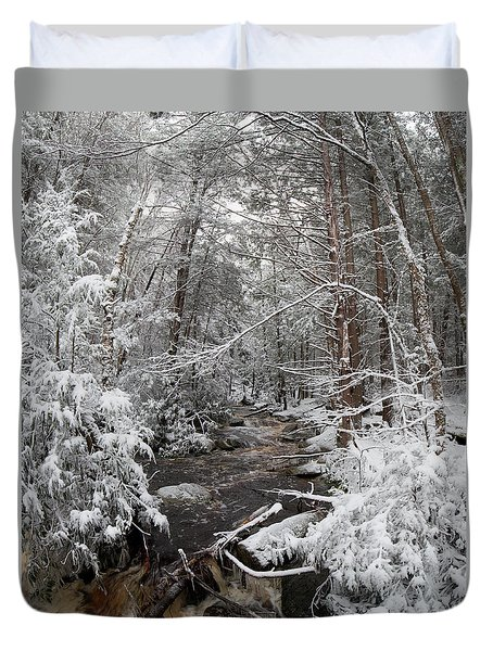 Snow Covered River Duvet Cover