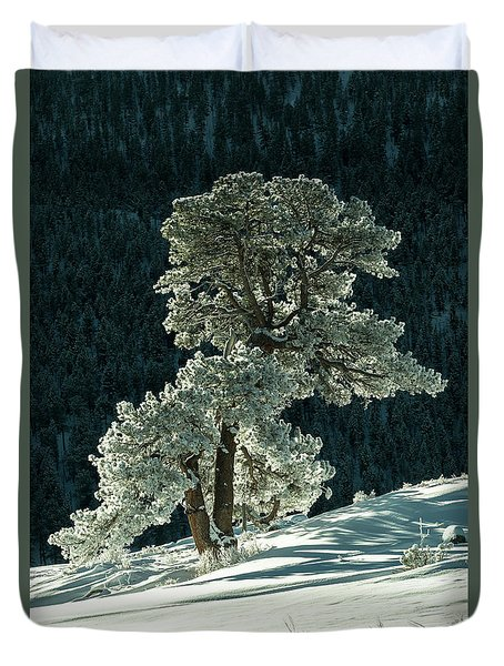 Snow Covered Tree - 9182 Duvet Cover