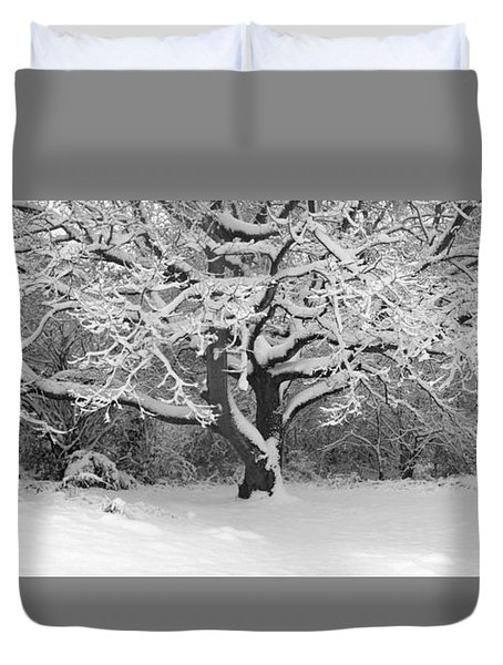 Snow Dusted Tree Duvet Cover