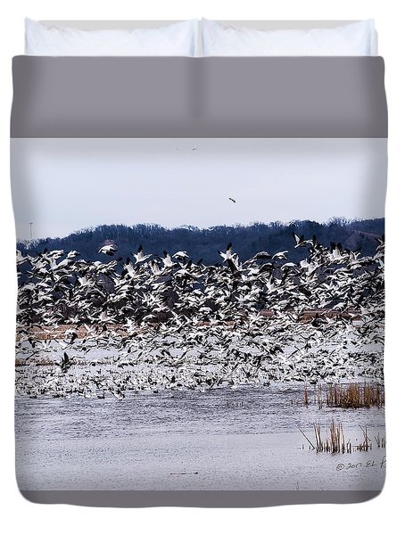 Snow Geese At Squaw Creek Duvet Cover by Edward Peterson