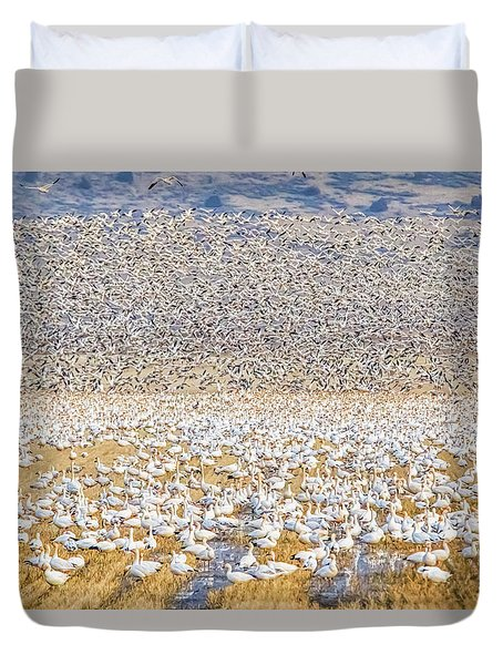 Snow Geese Take Off 1 Duvet Cover