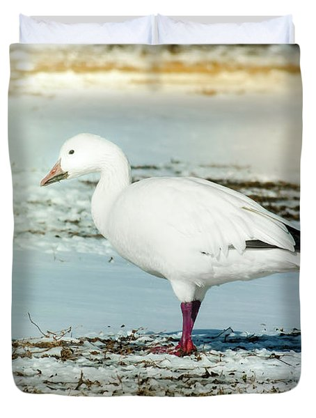Duvet Cover featuring the photograph Snow Goose - Frozen Field by Robert Frederick