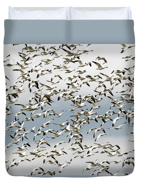 Duvet Cover featuring the photograph Snow Goose Storm by Mike Dawson
