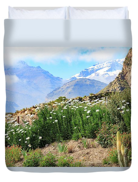 Duvet Cover featuring the photograph Snow In The Desert by David Chandler