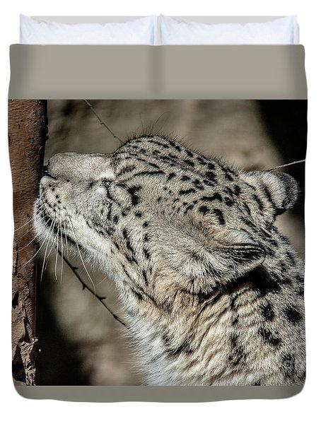 Snow Leopard Duvet Cover by Lisa L Silva
