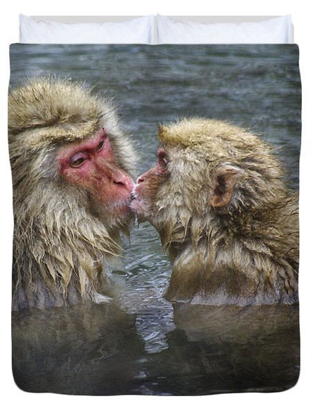 Snow Monkey Kisses Duvet Cover