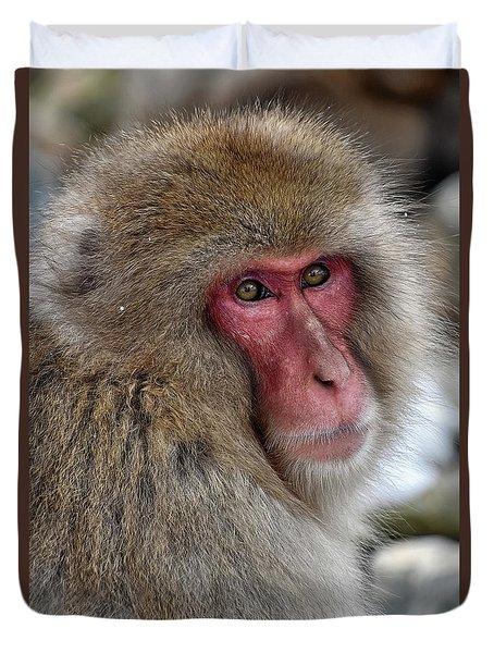 Snow Monkey Duvet Cover