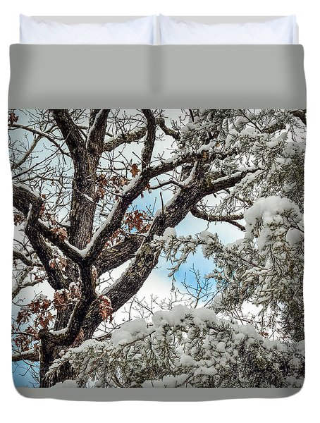 Snow On A Cedar Duvet Cover by Doug Long