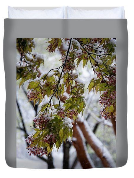 Duvet Cover featuring the photograph snow on the Cherry blossoms by Chris Flees
