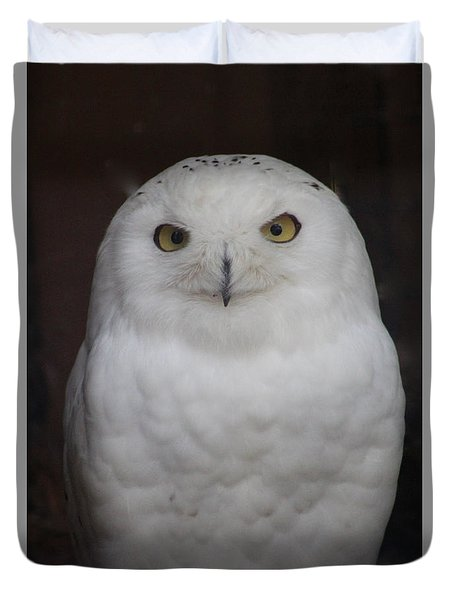 Duvet Cover featuring the photograph Snow Owl by Debra     Vatalaro