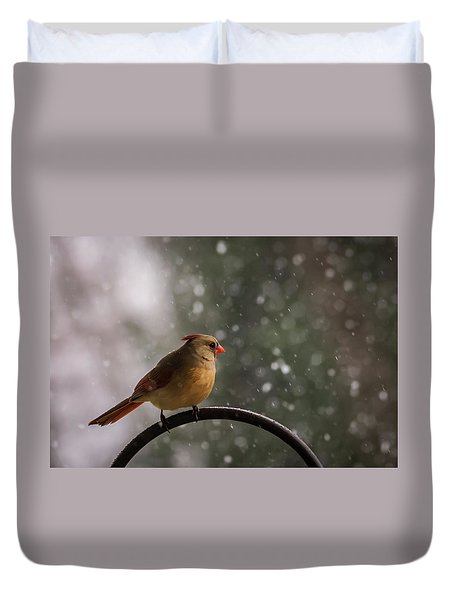 Duvet Cover featuring the photograph Snow Showers Female Northern Cardinal by Terry DeLuco