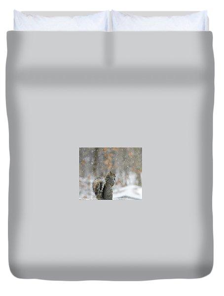 Snow Squirrel Duvet Cover