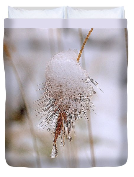 Snow Transfiguration Duvet Cover by Rona Black