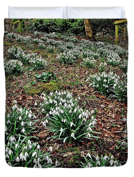 Snowdrops In Spring Woodland Duvet Cover